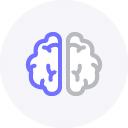 cerveau marque l'attention